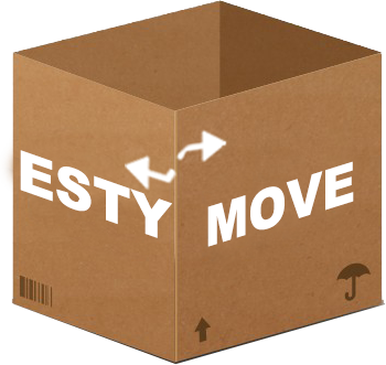 eMove moving box